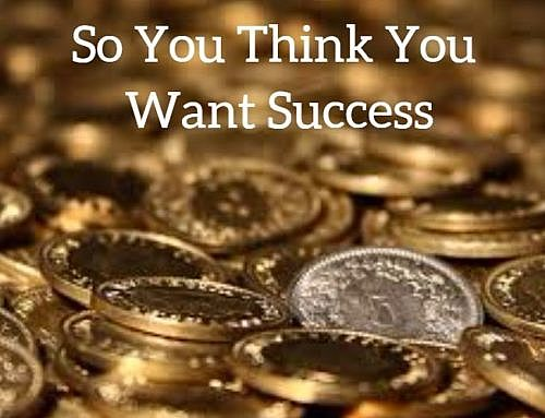 So You Think You Want Success